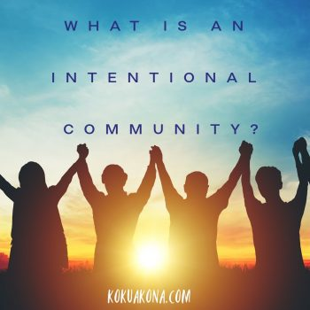 What is an intentional community?